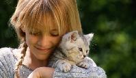 Simogathatunk-e macskát terhesen?
