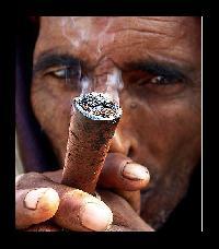 A marihuána-fogyasztás összefüggésbe hozható a kényszeres tisztálkodással is